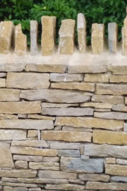 Purbeck Dry Stone Walling